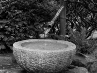 B&w Water Feature