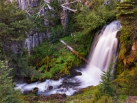 Bridge Creek Falls (161479lnd8)