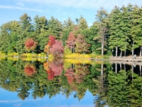 Fall In Merrimack, New Hampshire