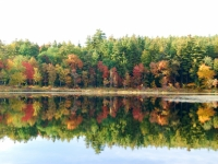 Fall On Naticook Lake
