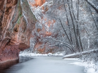 Red Rock Winter