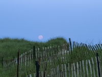 Full Moon On The Dunes