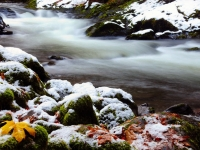 First Snow On The Salmon River