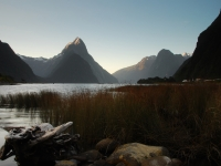 Sunset In Milford Sound