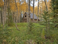Cabin In Aspen Grove