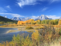 First Days Of Fall - Grand Teton Nat´l Park Iv