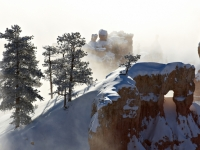 Snowy Morning At Bryce Canyon