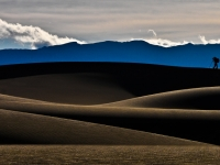 Photographer On Mesquite Flat Dunes, Death Valley