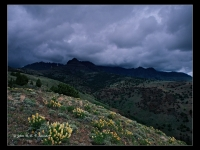 Storm Clearing The Crest Of  Steens Mountain