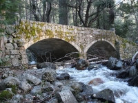 Old Stone Bridge In Yosemite National Park