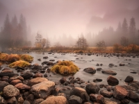 Foggy Autumn Evening At Valley View, Yosemite
