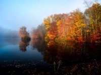 Fall And Fog On The Lake