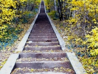 Autumn Light