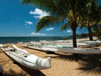 North Shore Canoe