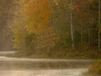 Lakeshore, Morning Mist, Autumn