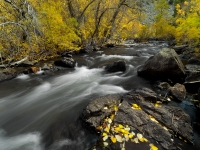 Rush Creek Autumn 2012