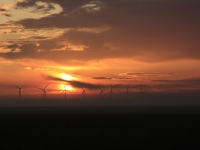 Wind Farm At Sunrise