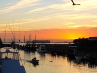 Shem Creek, Charleston, Sc