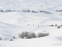 Winter's Rest In The Palouse