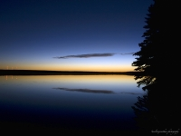 Dusk At Obed Lake