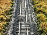 Palouse Tracks