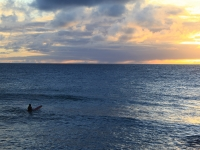 Sunset Surfing In Kona