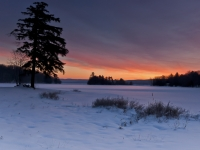 Adirondack Winter Morning