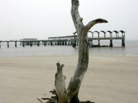 Alone On Jekyl Island
