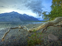 Lake Mcdonald Beach