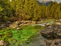 Gold Creek,golden Ears Park