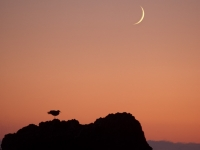 Waxing Crescent Moon At Sunset