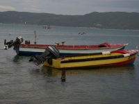 Fishing Boats In Port Royal