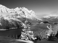Winter's Approach, Peyto Lake