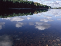 Penobscot River Reflections