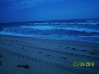 Beach At Nite