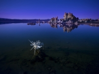 The Beautiful Desolate Earth - Mono Lake, Ca