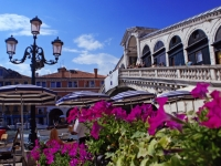 Summer Flowers At The Rialto Bridge