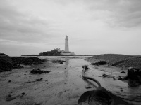 St Mary's Lighthouse Bedraggled