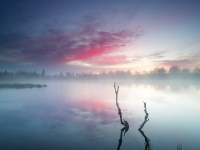 Misty Dawn On The Wild Northern Lake