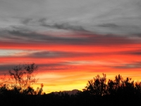 Tucson Sunset        Jan 9 2011