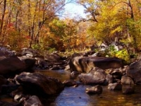 Richland Creek Wilderness Area