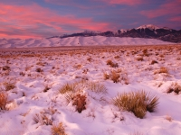 Great Sand Dunes In Snow
