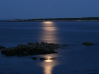 Moonrise At Schoodic Peninsula