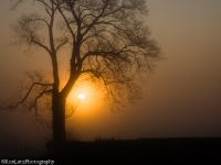 Antietam Sunrise
