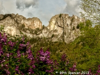 Spring At Seneca Rocks
