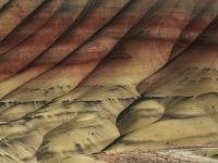 Painted Hills Abstract From Above