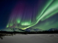 Aurora Curtain - Brooks Range