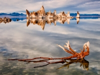 Reflection And Tufas, Mono Lake, California