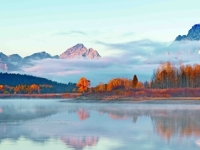 Oxbow Bend Morning-