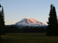 Mt. Adams From Muddy Meadows